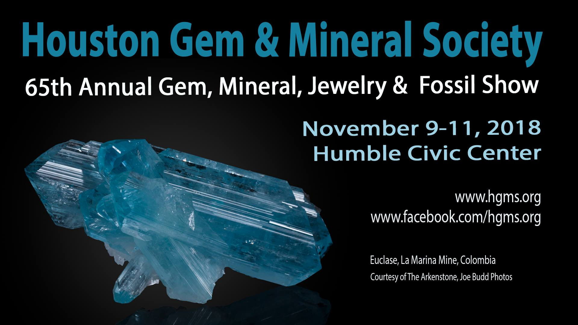 Houston Gem Show